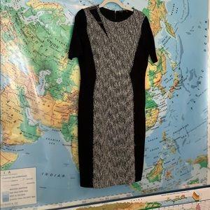 Amazing work dress from Elie Tahari